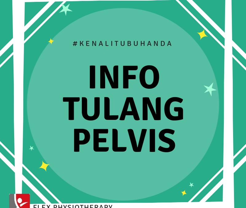 Info Tulang Pelvis
